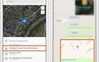 Геолокация в WhatsApp — как определить местоположение?