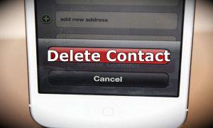 Как удалить контакт из Вайбера