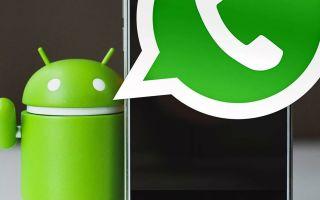 Скрытые фишки мессенджера WhatsApp