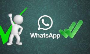 Что означают галочки в WhatsApp?