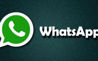 Как звонить в WhatsApp через компьютер