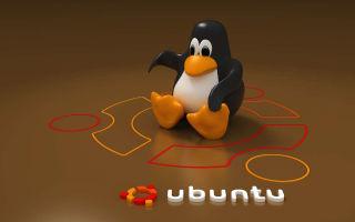 Дискорд для Линукс