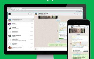 Что такое WhatsApp онлайн, как пользоваться Ватсапом без смартфона?