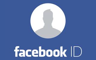 Эффективный способ определения ID Facebook
