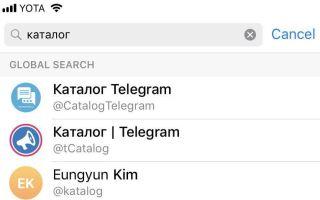 Каналы в Телеграмм: ищем и подписываемся