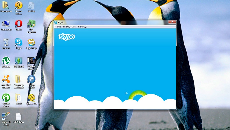 Экран Скайп