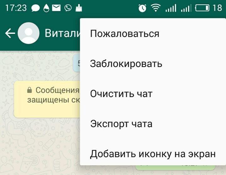 Иллюстрация на тему Список проверенных способов, как прочитать чужую переписку в WhatsApp